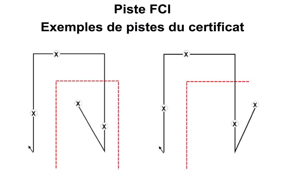 FCI Certif